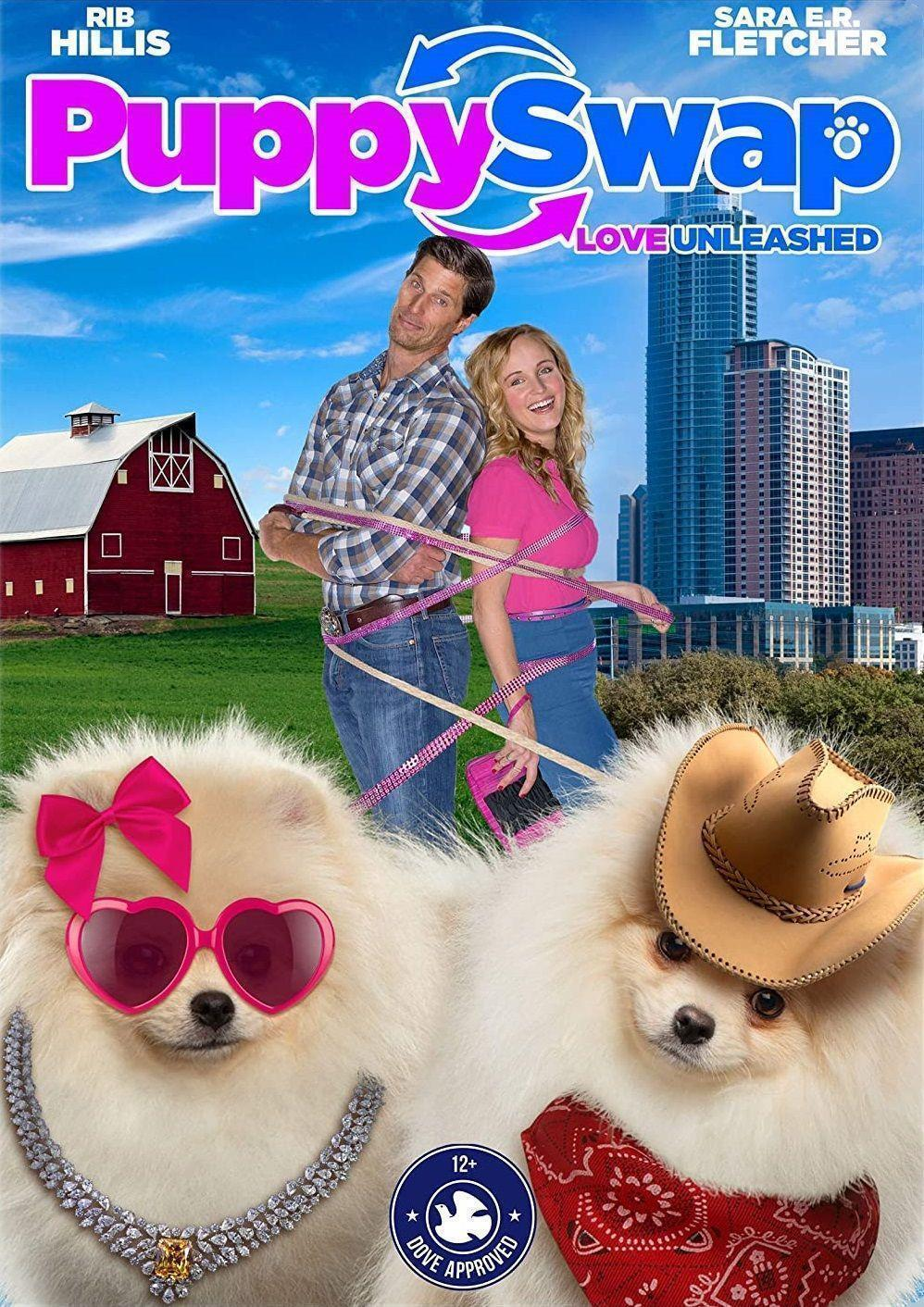 telecharger Puppy Swap 2019 FRENCH HDRiP XViD-STVFRV