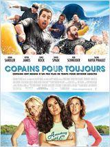 telecharger Copains pour toujours FRENCH DVDRIP 2010 torrent9