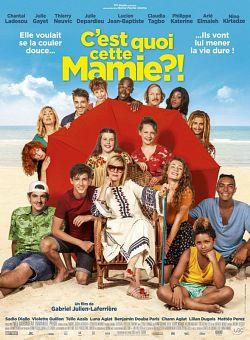 telecharger Cest Quoi Cette Mamie 2019 FRENCH 720p WEB H264-MARANA torrent9