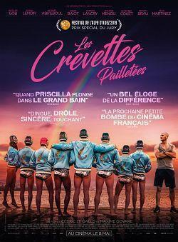 telecharger Les Crevettes Pailletees 2019 FRENCH 720p WEB H264-PREUMS torrent9