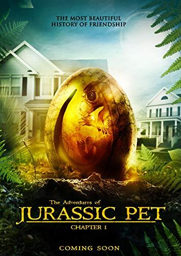 telecharger The Adventures Of Jurassic Pet 2019 FRENCH HDRiP XViD-STVFRV