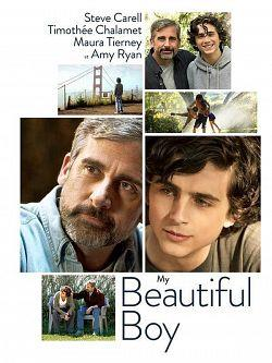 telecharger Beautiful Boy 2018 TRUEFRENCH BDRip XviD-EXTREME torrent9