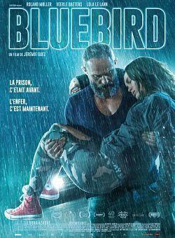 telecharger A Bluebird in My Heart 2018 FRENCH BDRip XviD-EXTREME torrent9