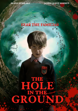 telecharger The Hole In The Ground 2019 TRUEFRENCH 720p BluRay x264 AC3-STVFRV torrent9