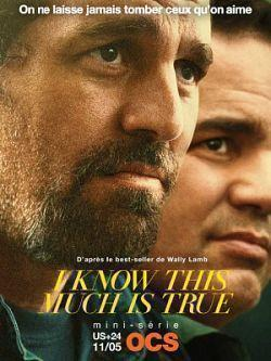 telecharger I Know This Much Is True S01E03 VOSTFR HDTV