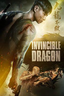 telecharger Invincible Dragon 2019 MULTi 1080p BluRay x264 AC3-EXTREME