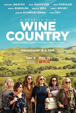 telecharger Wine Country 2019 FRENCH 720p WEB H264-EXTREME torrent9