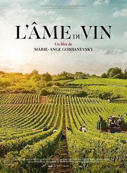 telecharger L Ame Du Vin 2020 FRENCH HDRip XviD-PREUMS torrent9