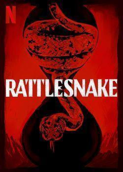 telecharger Rattlesnake 2019 MULTI 1080p WEB H264-EXTREME torrent9