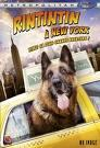 telecharger Rintintin A New-York FRENCH DVDRIP 2010 torrent9