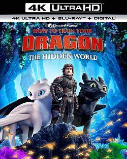 telecharger Dragon 3 2019 2160p UHD BLURAY REMUX HDR HEVC MULTI VFF EAC3 x265-EXTREME torrent9